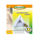 Dragon Breeding Light 80 W