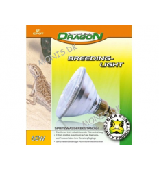 Dragon Breeding Light 60 W